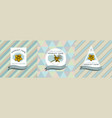 three colored labels with hypericum vector image vector image