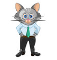 cute cat cartoon character animation vector image vector image