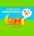 international homeless animals day vector image
