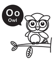 O Owl cartoon and alphabet for children to vector image vector image
