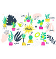 potted plants collection - set bright vector image
