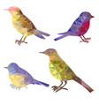 set of polygonal birds silhouettes vector image