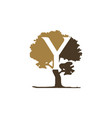 tree letter y vector image vector image