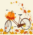 autumn background with bicycle pumpkin and leaves vector image vector image
