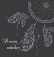 dream catcher black background vector image vector image