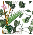exotic seamless pattern phalaenopsis orchid vector image vector image