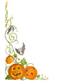 Funny pumpkin and bats vector image vector image