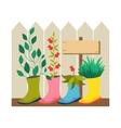 Garden flower bed vector image vector image