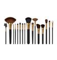 makeup brushes eyebrow comb make-up artist kit vector image