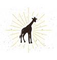 retro giraffe silhouette logo vector image
