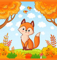 the fox sits in a clearing in the forest vector image