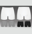 boxer shorts vector image vector image
