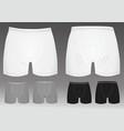 boxer shorts vector image
