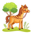 cartoon horse standing in a meadow vector image vector image
