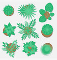 collection of plants for web design flat style vector image