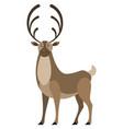 deer wild animal with big horns stag wildlife vector image