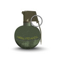 detailed realistic image of hand grenade vector image