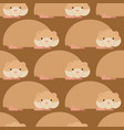 hamster pattern cute pet background home rodent vector image