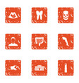 maturation icons set grunge style vector image vector image