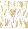 natural seamless pattern with wheat ears on white vector image