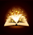 Old opened book with magic light background vector image vector image