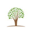 tree growth and prosperity symbol logo design vector image vector image