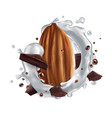 almond with chocolate pieces and a milk splash vector image