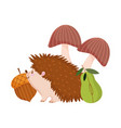 autumn hedgehog acorn pear and mushrooms isolated vector image vector image