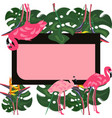 flamingo and pink hibiscus flower tropical summer vector image vector image