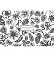 floral design with black and white celandine vector image vector image