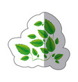 green branches with leaves icon vector image vector image