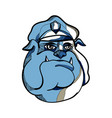 bulldog policeman head drawing vector image vector image