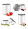 jarred vegetables tin set vector image