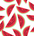 Seamless pattern with watermelon on the white vector image vector image