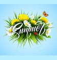 summer handwriting lettering with summer flower vector image