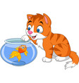 cartoon little cat playing with gold fish vector image vector image