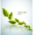 Flying green leaves nature background vector image
