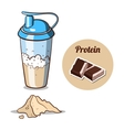 Shaker Chocolate Protein Powder vector image