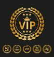 vip label on black background vector image vector image