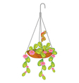 A hanging plant with flowers vector image vector image