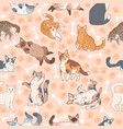 cat pattern seamless texture with cute multicolor vector image vector image