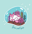 floral terrarium with cute kawaii cat vector image