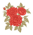 hand drawn red roses flowers and leaves vintage vector image