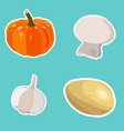set of flat cartoon vegetables stickers vector image vector image