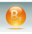vitamin B5 vector image vector image