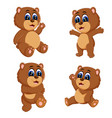 collection of the funny baby bear vector image vector image