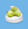 gooseberry in yogurt fruit vector image vector image
