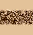 leopard pattern seamless design vector image vector image