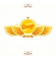 Premium quality orange juice vector image vector image