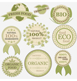 Set of eco bio natural labels retro vintage style vector image vector image